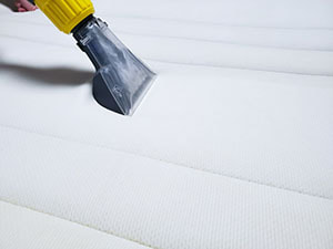 the possibilities of professional upholstery cleaning